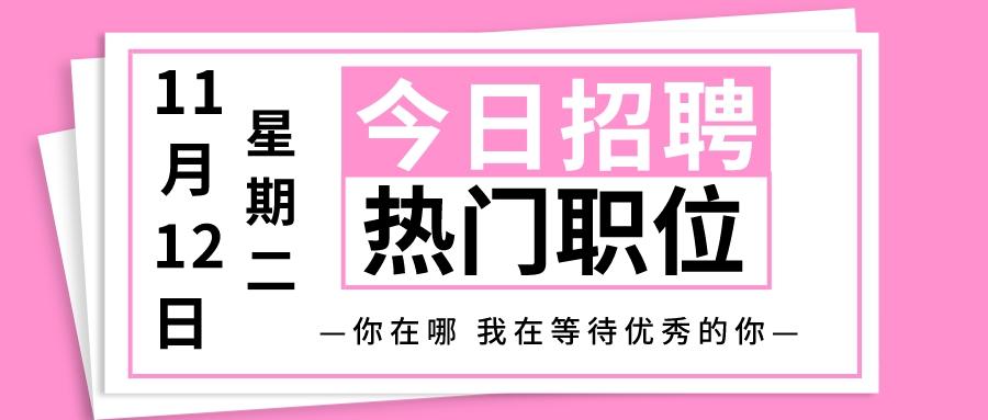 【天津招聘】11月12日今日新增热门职位
