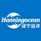 汉宁远洋(北京)光电科技有限公司天津分公司