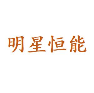 天津市明星恒能科技发展有限公司