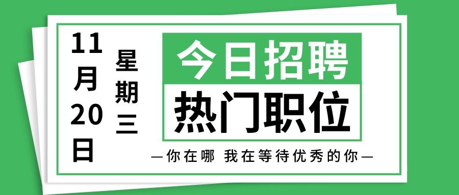 【天津招聘】11月20日今日新增热门职位