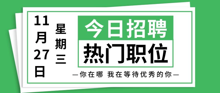 【天津招聘】11月27日今日新增热门职位