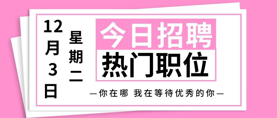 【天津招聘】12月3日今日热门职位推荐