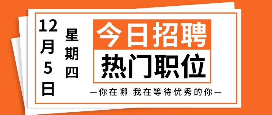 【天津招聘】12月5日今日热门职位推荐