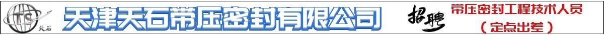 天津天石带压密封有限公司招聘带压密封工程技术人员(定点出差)